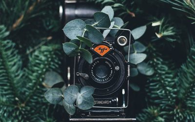 FREE Photo Resources for Your Next Design Project, Blog or Social Post