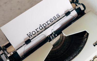I Have a WordPress Site Now What?